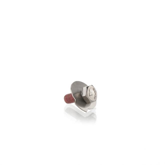 Shaft nut locking screw with tab washer